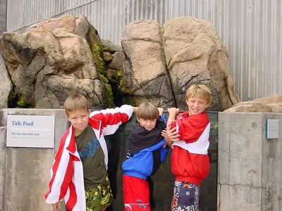 Monterey  Aquarium - Waiting for the tide to splash!