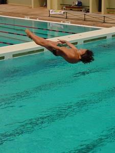Reverse Dive