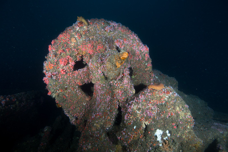 Remnants of Olympic II Wreck