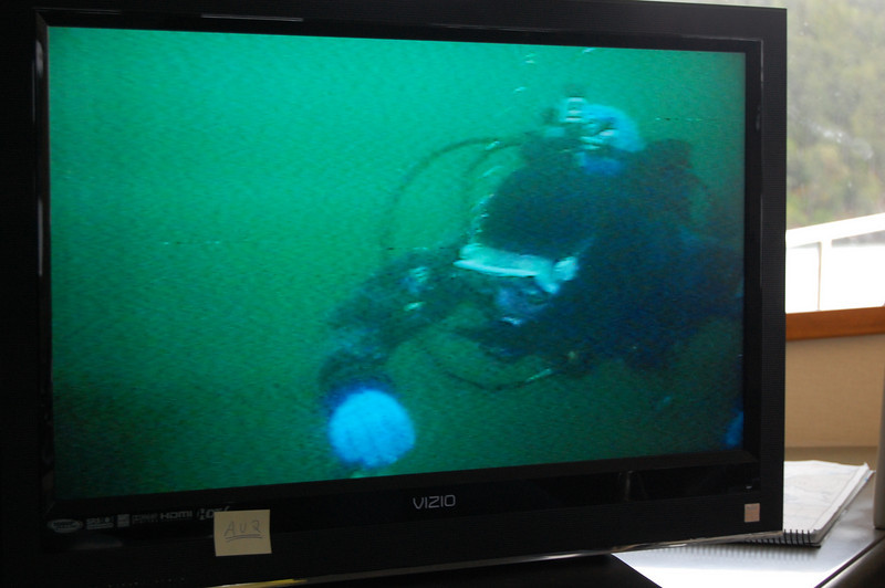 Nick underwater