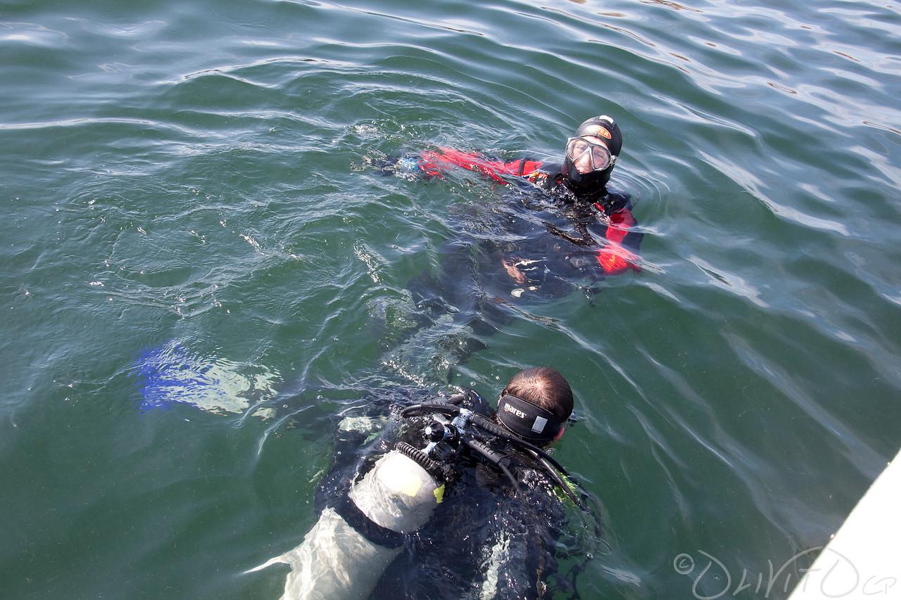 Swim to Anker chain
