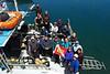 The Monterey 2010 REEF survey team