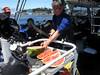 Samurai Dive Boat Captain Phil Sammet machetes the watermelon.