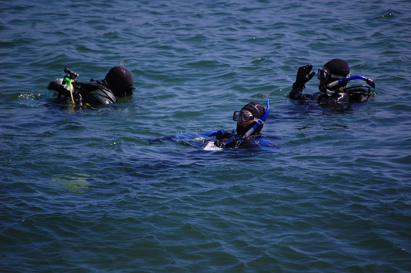 Divers in the water at Breakwater