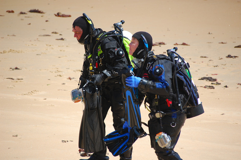 Clines coming back from their breakwater dive