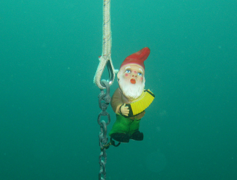 Accordian Boy - the gnome that came along on the trip - seen here underwater.