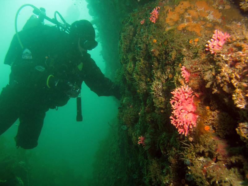 Todd Cliff examines the walls of Box Canyon