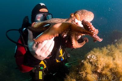 Octopussy-07