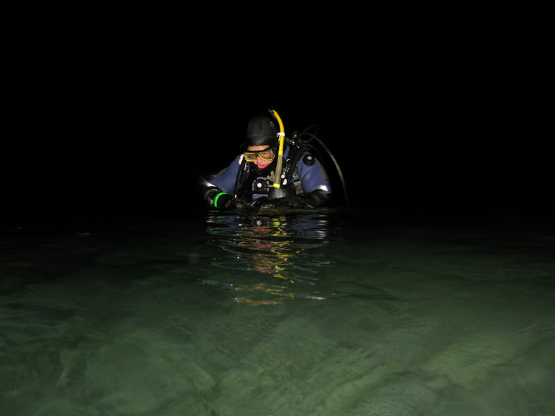 Claude in the water at night