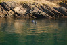 The drop at Sentinel Island