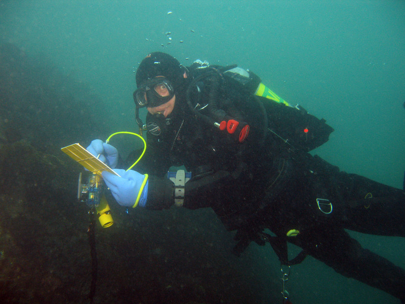 Greg, doing a REEF survey underwater