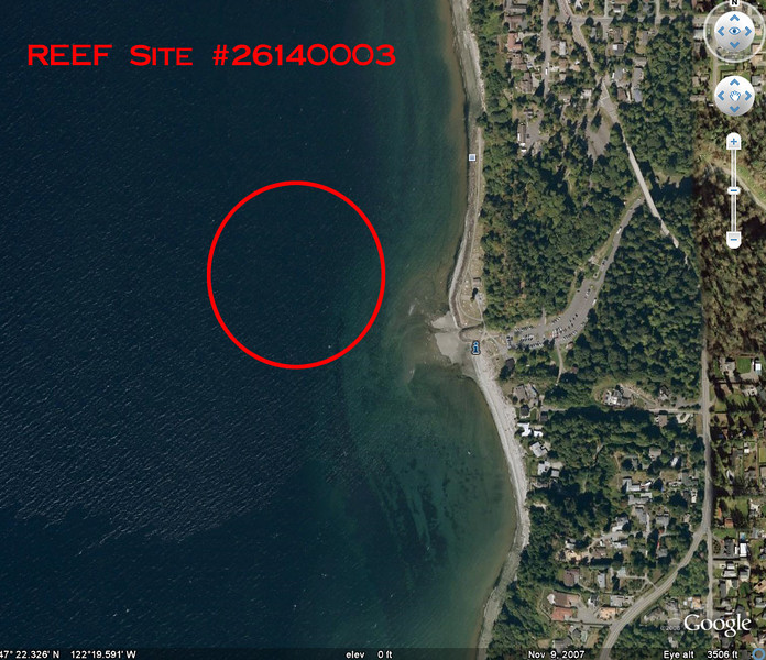 Saltwater State Park - Google Earth view and approximate location of where new diving reef is going to be constructed. REEF volunteer scuba divers will monitor the artificial reef to see how marine life settles in and around it over time.