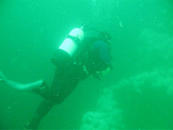 Swimming alongside Plumose covered walls
