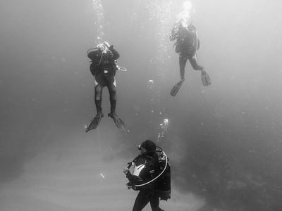 Plongée Dakaroise