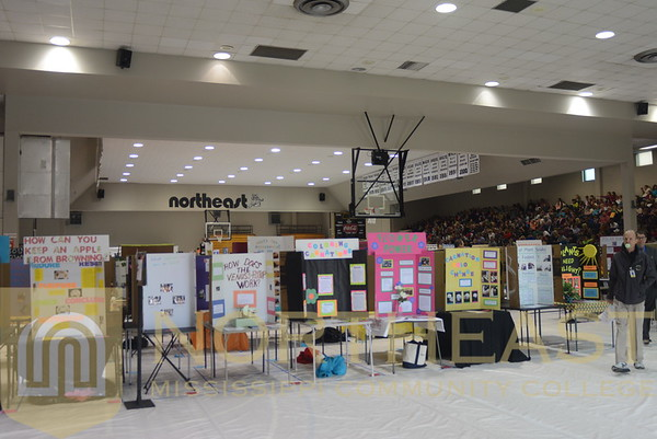 2014-03-06 CE Lower Division Science Fair