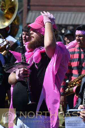 2018-10-11 BAND Band Breast Cancer Support at Pep Rally