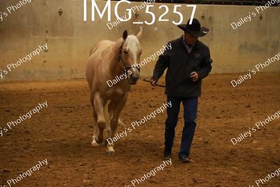 IMG_5257