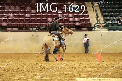 IMG_1629