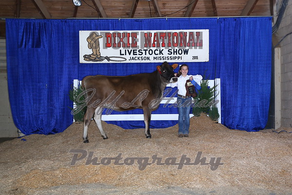 2015 Dixie National