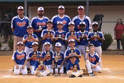 Dixie Youth Baseball All-Stars