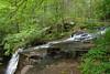 T-2017-0129a Thunderbird Trail