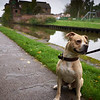 Towpath Portraits 03 - Thorn