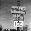 ADK Document Worms Ice Willsboro