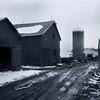 b Argyllsire Farm 1998 BarnYardMud