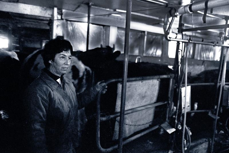 b Argyllsire Farm 1998 BarbSoftInBarn