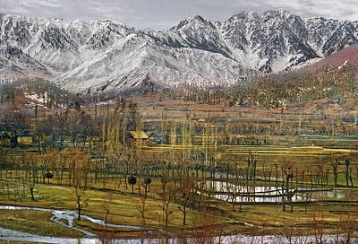 Srinigar Rural a