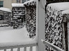 Driven Snow, 2017