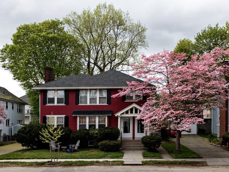 The House Across the Street 2017