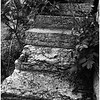 Cohoes NY Circa 1997-1999 Canal Ruins Steps Up