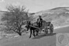 """Solo Wagon (Turkey), 1972 Donkey Cart<br /> <br /> Simplicity lived with dignity. -- <a href=""""http://globalvillagestudio.com/"""">http://globalvillagestudio.com/</a> - Photographer for Raleigh, Durham, Cary and Chapel Hill"""