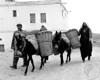 """Basic Transportation (Turkey), 1972 - Family with Donkies and Baskets<br /> <br /> Humans in every culture find ways to make life work for them. This is another example of practical ingenuity. http/index.html -- <a href=""""http://globalvillagestudio.com/"""">http://globalvillagestudio.com/</a> - Photographer for Raleigh, Durham, Cary and Chapel Hill"""
