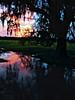 """<a href=""""http://globalvillagestudio.com/"""">http://globalvillagestudio.com/</a>  Homerville Georgia"""
