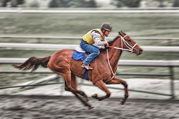 Keeneland, Lexington Kentucky    http://globalvillagestudio.com                              Lexington Kentucky Photographer John Lynner Peterson