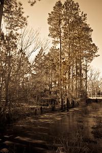 Homerville Georgia --- Global Village Studio photography
