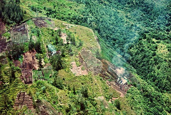Papua New Guinea Highlands Garden Plots