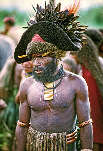 Papua New Guinea's famous Goroka Show Sing-Sing. A very wealthy man with many pigs as noted byu the line of light sticks hung from his neck.  This is a human hair wig with a triangle of the Papua New Guinea national flag peeking up. He has bird of paradise andd other feathers and likely accented with cassowary bones stuck into the fur at the base of the wig.  He is wearing bilum like material strung from his bark belt.