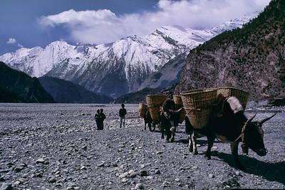 Mountain cruising / Através das montanhas