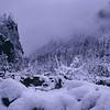 Snow storm / Tempestade de neve