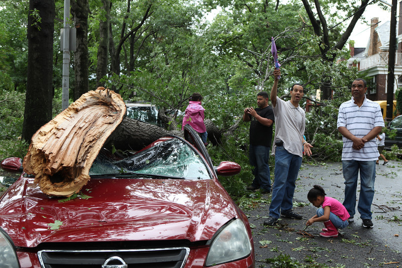 Storm stories are shared. Kids play with fallen branches and climb onto trees. Parents take pictures.