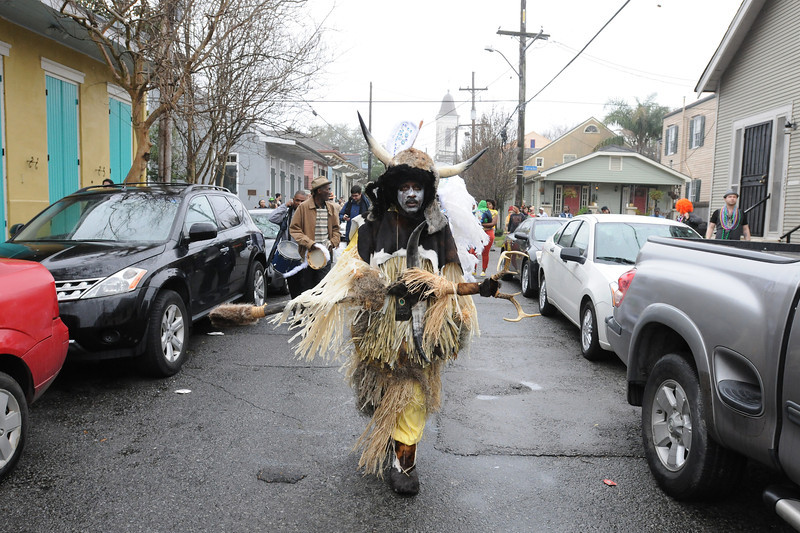 The Wild Man of the Fi-Yi-Yi tribe, Mardi Gras in New Orleans, LA , Feb. 9-12, 2013. By David Bundy