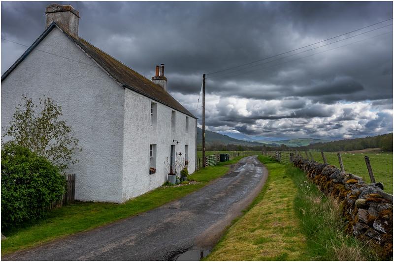 Scotland  Cairngorms Old Struan 4 May 2019