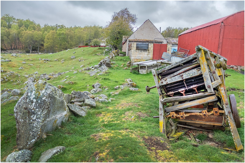 Scotland Kincraig Leault Farm 1  May 2019