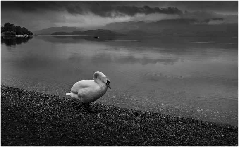 Scotland Loch Lomond 2 BW May 2019