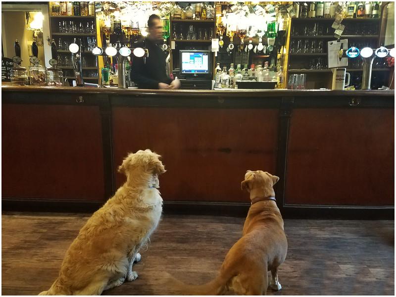 Scotland Pitlochry Moulin Inn Pub 1 May 2019