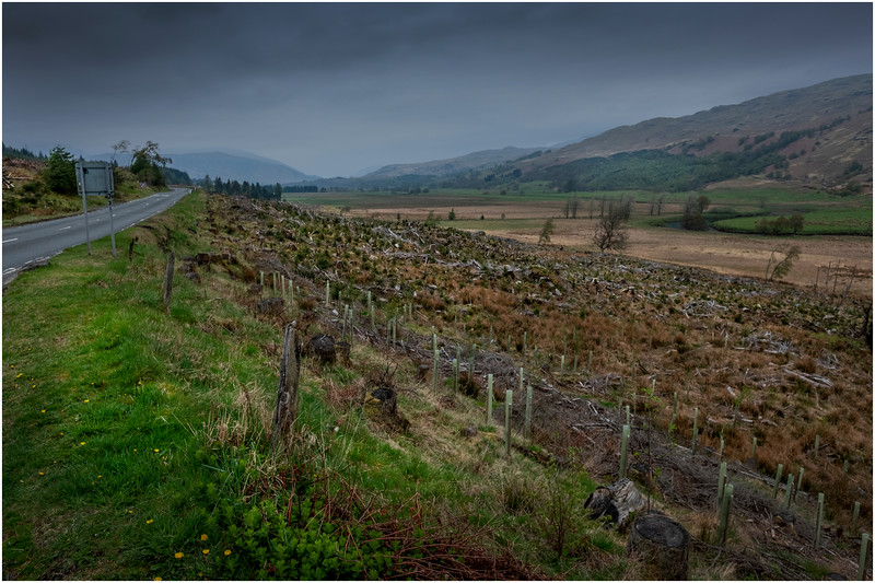 Scotland Auchesson, Roadscape 1 May 2019