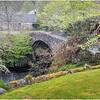 Scotland  Cairngorms Old Struan 9 May 2019